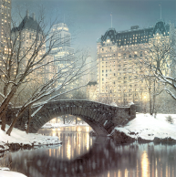 TwilightInCentralPark