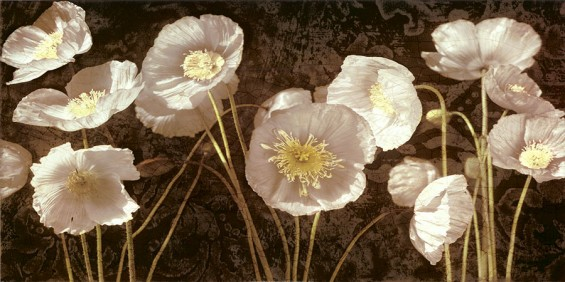 baroque-poppies