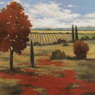 Chianti Country II