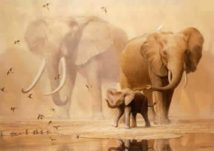 African Elephants And Namaqua Doves