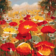 Meadow Poppies IV
