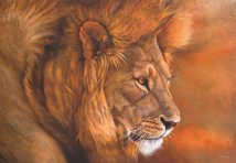 Lion du Serengeti