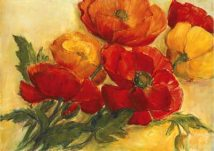 Splendid Poppies