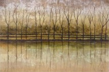 Reflective Waters