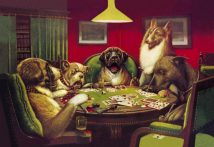 Stun, Shock & the Win Dog Poker 1903