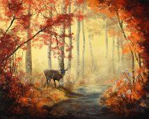 Deer Creek Landscape